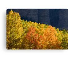 Nature Show Canvas Print