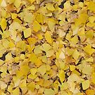 Ginkgo Leaves III by Rupert Russell