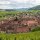 Panoramic View of Riquewihr and Surrounding Vineyards by Yair Karelic