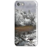 Lone Moose on a Snowy Oxbow iPhone Case/Skin