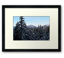 Canadian Winter - Grouse Mountain  Framed Print
