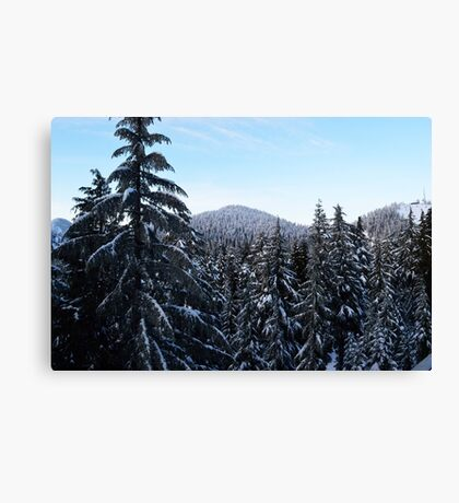 Canadian Winter - Grouse Mountain  Canvas Print