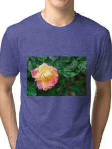 Fading autumn rose Tri-blend T-Shirt