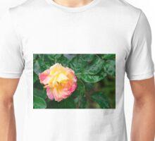 Fading autumn rose Unisex T-Shirt
