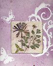 Lavender Gift Box With Botanical Window by Sandra Foster