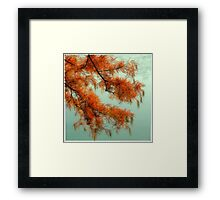 dreamlike red tree Framed Print