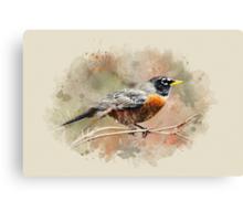 American Robin Watercolor Art Canvas Print