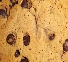 CHOCOLATE CHIP COOKIE (Textures) by leethompson
