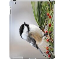 Pine Chickadee iPad Case/Skin