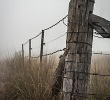 Mist Fence by Candice84