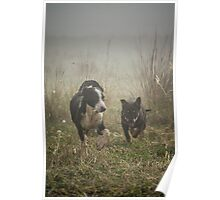 Puppy Play Poster