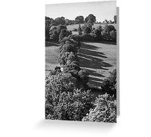 Long Shadows of Autumn Greeting Card