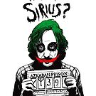 Why so Sirius? by toxicpirate