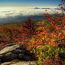 Autumn Inversion by Miles Moody