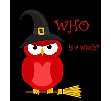 Who is the witch? - red owl Photographic Print