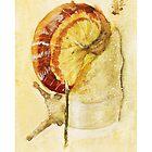 Snail by Aimée Becker