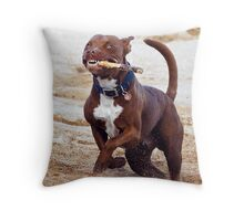 Take It! Throw Pillow