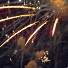 4th of July fireworks by Sandra Lee Woods