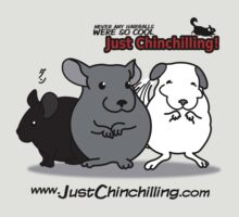 """Just Chinchilling!"" 2013 cover by FreakShop404"