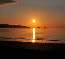 Beach Sunrise by ZirconInk