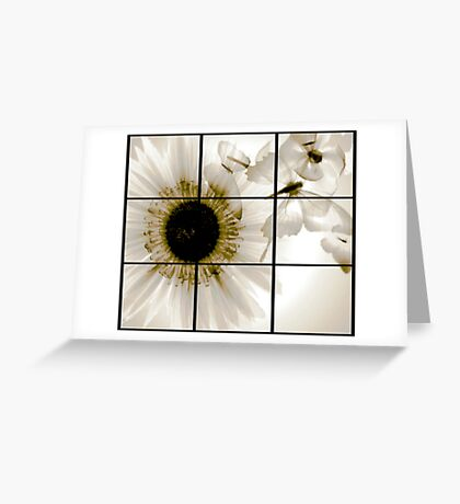 transparent flower in  grey Greeting Card