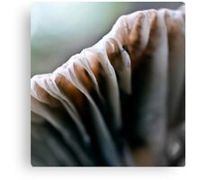 Macro Mushroom v.2 Canvas Print