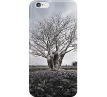 Silver Boab iPhone Case/Skin