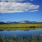 Reflections of the Rockies by Vickie Emms