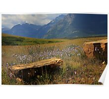 Mountains, Fields of Flowers and Rock Pieces Poster