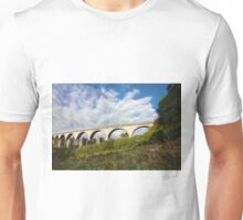 College Wood Viaduct Penryn Unisex T-Shirt