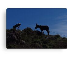 Photographer and Donkey Canvas Print