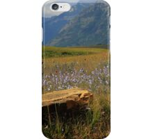 Mountains, Fields of Flowers and Rock Pieces iPhone Case/Skin