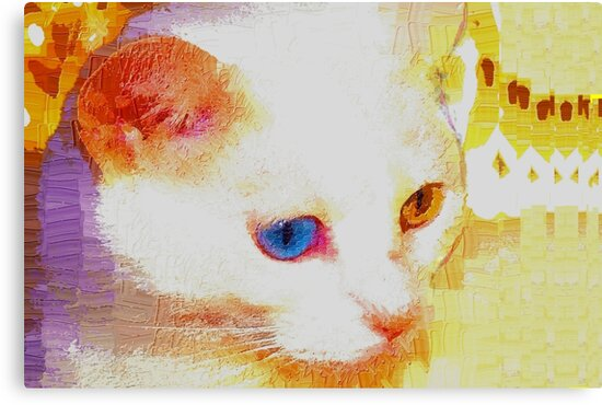 Cat portrait by ♥⊱ B. Randi Bailey