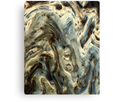 Deformation Canvas Print