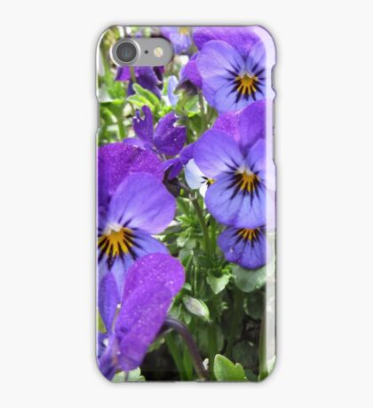 Wild Violet iPhone Case/Skin