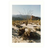 Mexico Desert Mountain Sunset Art Print