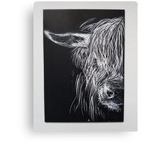 Highland Cows  Canvas Print