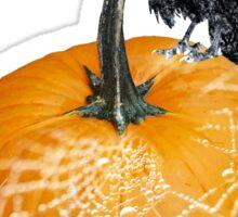 Crow & Pumpkin Threads Sticker