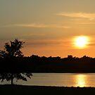 Golden Sunset Across Mozingo Lake by Ben Waggoner