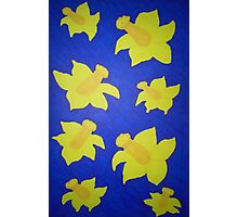 Pop Art Daffodils in Blue Photographic Print
