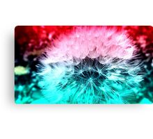 Cosmic Wishes Canvas Print