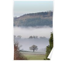 Morning mist after rainy night Poster