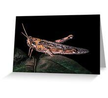 Night Hopper Greeting Card