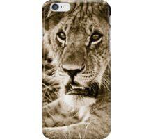 Lioness in Masai Mara, Kenia iPhone Case/Skin