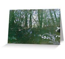 Sea of Trees Greeting Card