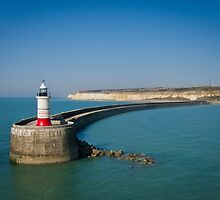 Newhaven Lighthouse by Sue Martin