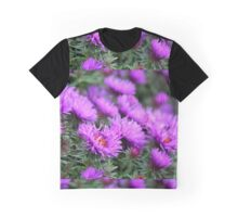'Purple Dome' Aster - Symphyotrichum novae-angliae Graphic T-Shirt