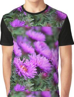 'Purple Dome' Aster - Symphyotrichum novae-angliae Graphic T-Shirt