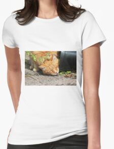 Ginger cat stealing catnip plant Womens Fitted T-Shirt