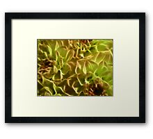 Bright abstract fractal color flower Framed Print